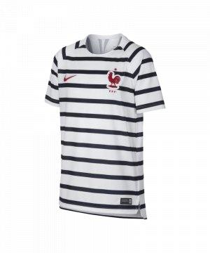 nike-frankreich-dry-squad-top-t-shirt-kids-f100-replica-fanshop-fanbekleidung-893714.jpg