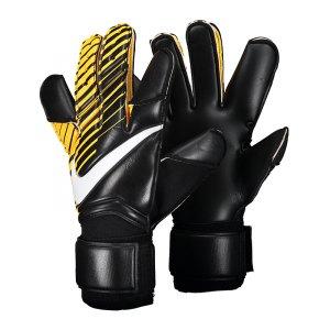 nike-gk-vapor-grip-3-promo-torwarthandschuh-f010-equipment-torwart-handschuh-tor-fussball-abwehr-ausstattung-ausruestung-pgs253.jpg