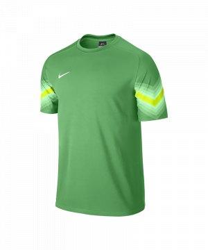 nike-goleiro-torwarttrikot-kurzarm-goalkeeper-jersey-men-herren-erwachsene-gruen-f307-588416.jpg