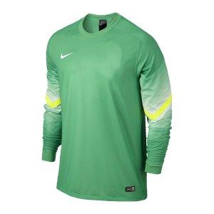 nike-goleiro-torwarttrikot-langarm-goalkeeper-jersey-men-herren-erwachsene-gruen-f307-588417.jpg