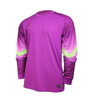nike-goleiro-torwarttrikot-langarm-goalkeeper-jersey-men-herren-erwachsene-lila-f550-588417.jpg