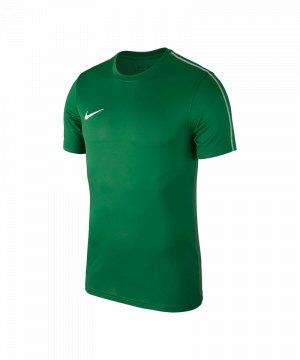 nike-park-18-football-top-t-shirt-gruen-f302-t-shirt-oberteil-shirt-team-mannschaftssport-ballsportart-aa2046.jpg
