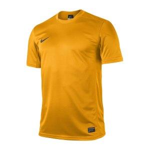 nike-park-5-trikot-kurzarm-gold-schwarz-f739-fussball-trikot-jersey-448209.jpg