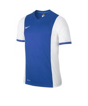 nike-park-derby-trikot-kurzarm-jersey-men-herren-erwachsene-blau-weiss-f463-588413.jpg
