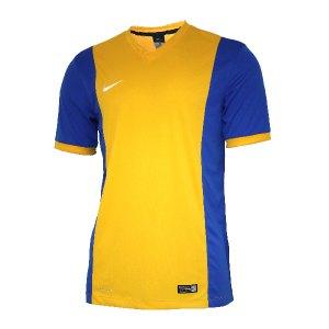 nike-park-derby-trikot-kurzarm-jersey-men-herren-erwachsene-gelb-f740-588413.jpg