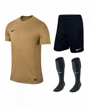 nike-park-vi-trikotset-teamsport-ausstattung-matchwear-spiel-f738-725891-725887-394386.jpg
