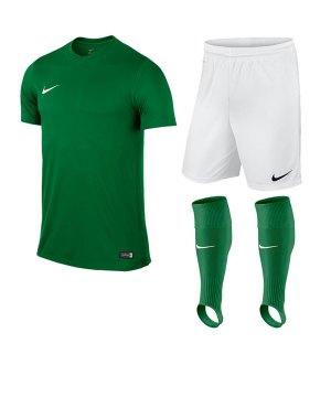 nike-park-vi-trikotset-teamsport-ausstattung-matchwear-spiel-kids-f302-725984-725988-507819.jpg