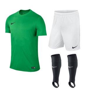 nike-park-vi-trikotset-teamsport-ausstattung-matchwear-spiel-kids-f303-725984-725988-507819.jpg