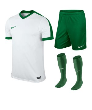 nike-striker-iv-trikotset-teamsport-ausstattung-matchwear-spiel-f102-725893-725903-394386.jpg