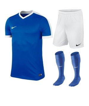 nike-striker-iv-trikotset-teamsport-ausstattung-matchwear-spiel-f463-725893-725903-394386.jpg