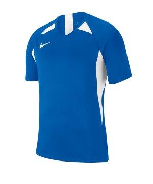 nike-striker-v-trikot-kurzarm-kids-blau-f463-fussball-teamsport-textil-trikots-aj1010.jpg