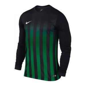 nike-striped-division-2-trikot-langarmtrikot-vereinsausstattung-mannschaft-teamsport-f013-725886.jpg