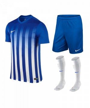 nike-striped-division-ii-trikotset-teamsport-ausstattung-matchwear-spiel-f463-725893-725903-394386.jpg