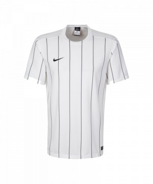 nike-striped-segment-2-trikot-kurzarm-spielertrikot-herrentrikot-teamsport-men-herren-maenner-weiss-f156-644634.jpg