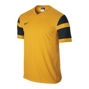 nike-trophy-2-trikot-kurzarm-jersey-men-herren-erwachsene-gelb-schwarz-f739-588406.jpg