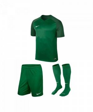 nike-trophy-iii-trikotset-gruen-f302-equipment-teamsport-fussball-kit-ausruestung-vereinskleidung-881484-trikotset.jpg