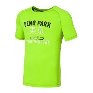 odlo-raptor-t-shirt-running-laufshirt-runningshirt-men-herren-maenner-laufen-joggen-rennen-gruen-f40130-347652.jpg