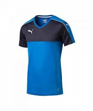 puma-accuracy-trikot-kurzarm-jersey-teamsport-vereine-kids-kinder-blau-weiss-f02-702214.jpg