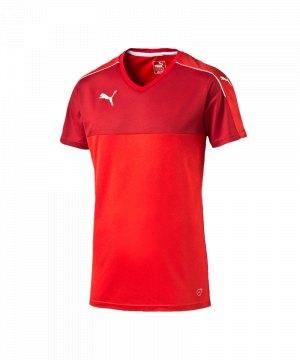 puma-accuracy-trikot-kurzarm-jersey-teamsport-vereine-kids-kinder-rot-weiss-f01-702214.jpg