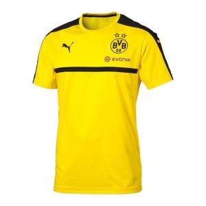 puma-bvb-dortmund-trainingsshirt-gelb-f01-fanartikel-bekleidung-sport-training-borsigplatz-749845.jpg