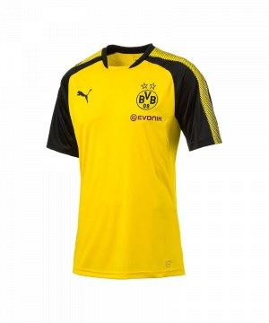 puma-bvb-dortmund-trainingsshirt-gelb-schwarz-f01-trainingsoberteil-kurzarm-fanshop-borussia-schweissabtragend-funktionsshirt-erwachsene-751765.jpg