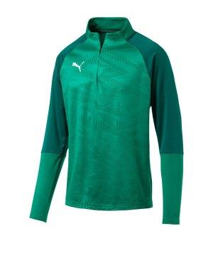 puma-cup-training-core-1-4-zip-top-gruen-f05-fussball-teamsport-textil-sweatshirts-656018.png