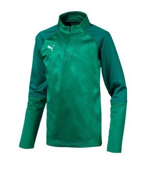 puma-cup-training-core-1-4-zip-top-kids-gruen-f05-fussball-teamsport-textil-sweatshirts-656019.png