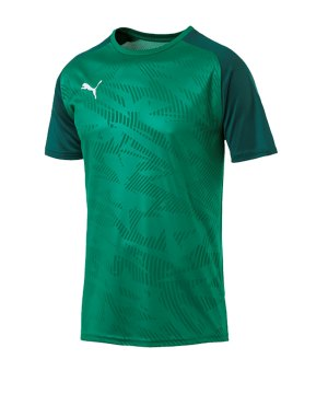 puma-cup-training-core-t-shirt-gruen-f05-fussball-teamsport-textil-t-shirts-656027.jpg