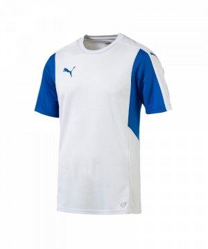 puma-dominate-trikot-kurzarm-f13-kids-shortsleeve-shirt-jersey-spiel-training-teamsport-703063.jpg