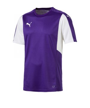 puma-dominate-trikot-kurzarm-lila-weiss-f10-shortsleeve-shirt-jersey-matchwear-spiel-training-teamsport-703063.jpg