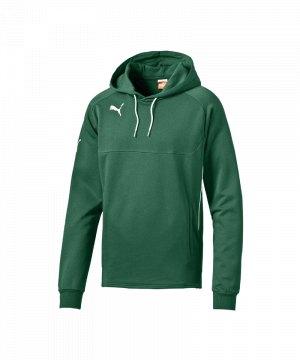 puma-esito-3-hoody-kapuzenpullover-sweatshirt-kinder-junior-kids-gruen-weiss-f05-653979.jpg