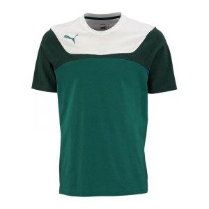 puma-esito-3-leisure-tee-t-shirt-kids-kinder-kindershirt-trainingskleidung-training-gruen-weiss-f05-653969.jpg