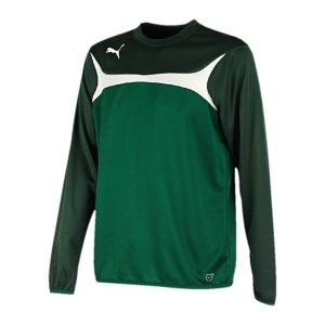 puma-esito-3-sweatshirt-training-trainingsshirt-kids-kinder-children-gruen-weiss-f05-653967.jpg