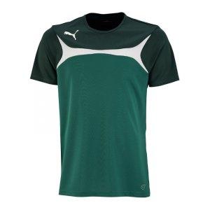 puma-esito-3-trainingsshirt-kids-t-shirt-kurzarm-kinder-training-trainingskleidung-gruen-weiss-f05-701904.jpg