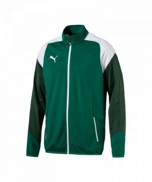 puma-esito-4-polyesterjacke-gruen-weiss-f05-teamsport-herren-men-maenner-jacket-jacke-655223.jpg