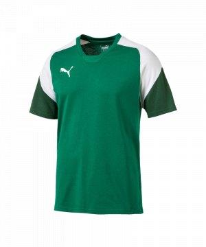 puma-esito-4-tee-t-shirt-kids-f05-fussball-soccer-mannschaft-ausstattung-teamsport-655226.jpg