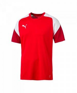 puma-esito-4-trainingsshirt-f01-fussball-training-shirt-sport-team-mannschaft-kids-655221.jpg