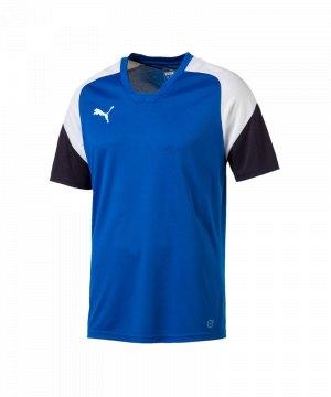 puma-esito-4-trainingsshirt-f02-fussball-training-shirt-sport-team-mannschaft-kids-655221.jpg