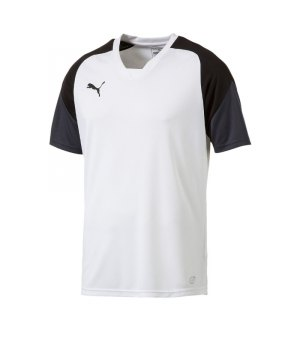 puma-esito-4-trainingsshirt-f04-fussball-training-shirt-sport-team-mannschaft-kids-655221.jpg