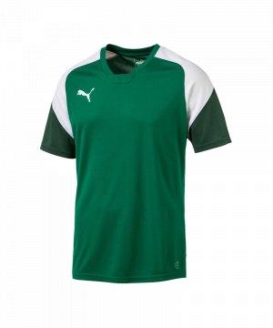 puma-esito-4-trainingsshirt-f05-fussball-training-shirt-sport-team-mannschaft-kids-655221.jpg