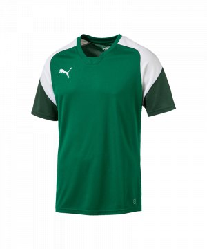 puma-esito-4-trainingsshirt-gruen-weiss-f05-training-sport-fussball-teamsport-trikot-655221.jpg