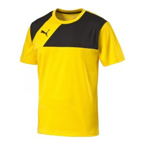 puma-esquadra-t-shirt-shirt-teamsport-fussball-f07-gelb-schwarz-654384.jpg