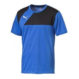 puma-esquadra-t-shirt-shirt-teamsport-fussball-f23-blau-schwarz-654384.jpg