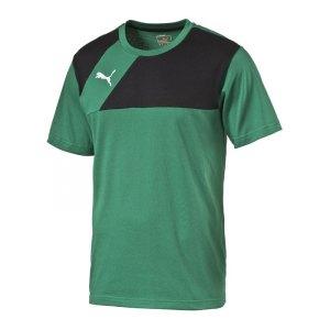 puma-esquadra-t-shirt-shirt-teamsport-fussball-f28-gruen-schwarz-654384.jpg