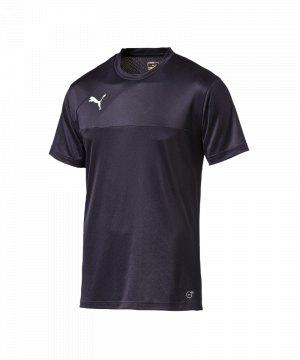 puma-esquadra-training-jersey-trainingstrikot-trikot-kids-kinder-teamsport-fussball-f29-blau-654379.jpg