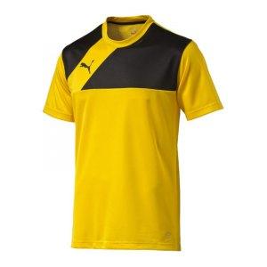 puma-esquadra-training-jersey-trainingstrikot-trikot-teamsport-fussball-f07-gelb-schwarz-654379.jpg