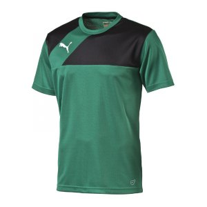 puma-esquadra-training-jersey-trainingstrikot-trikot-teamsport-fussball-f28-gruen-schwarz-654379.jpg