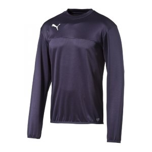 puma-esquadra-training-sweatshirt-pullover-fussball-warmmachsweat-kids-kinder-teamsport-f29-blau-654380.jpg