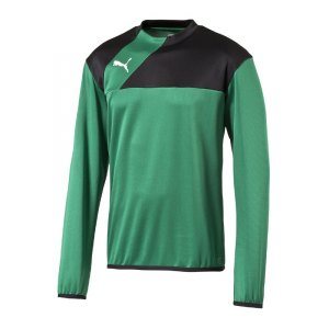 puma-esquadra-training-sweatshirt-pullover-fussball-warmmachsweat-teamsport-f28-gruen-schwarz-654380.jpg
