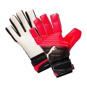 puma-evopower-grip-2-3-ic-torwarthandschuh-f01-goalie-gloves-keeper-equipment-zubehoer-ausruestung-ausstattung-041224.jpg